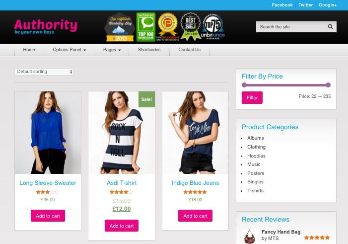 Authority Shop WordPress Affiliate Product Design Theme