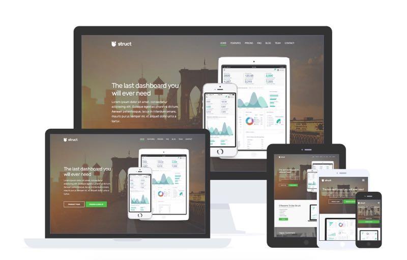 Struct WordPress SaaS & Mobile Apps Promoting Theme