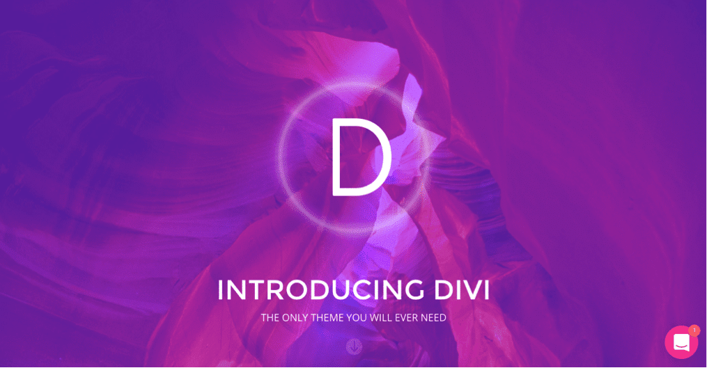 Divi WordPress Visual Page Builder theme