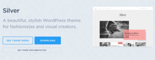 Silver WordPress Fashion Blogger Theme