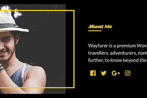 Wayfarer WordPress Theme - Author Section