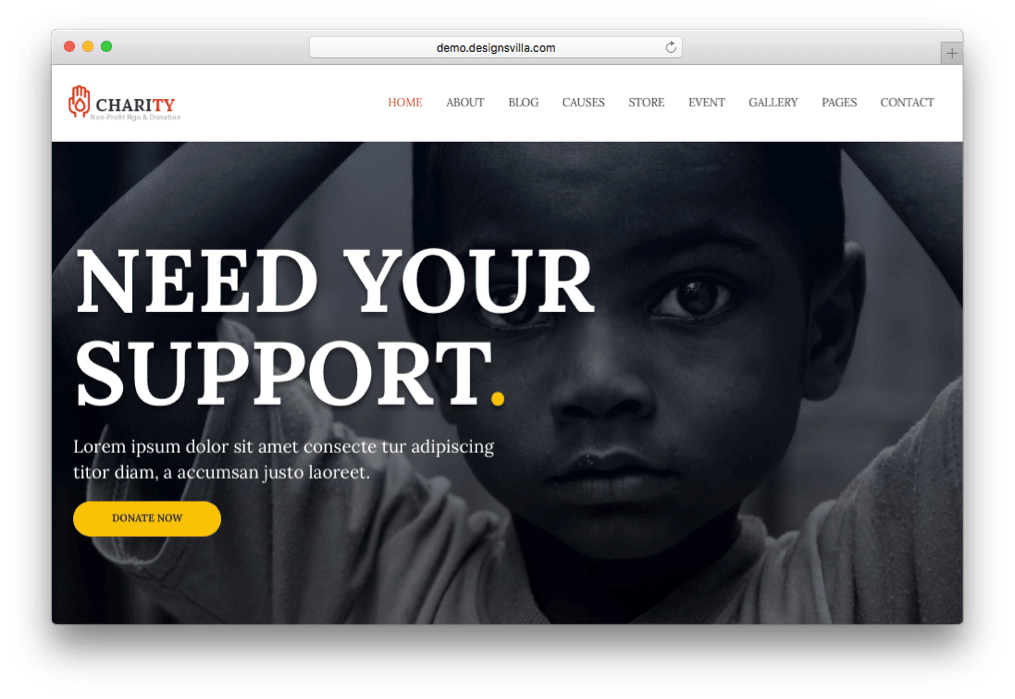 Charity Non-profit WordPress Theme