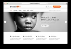 DonateNow WordPress Donation Plugin Theme