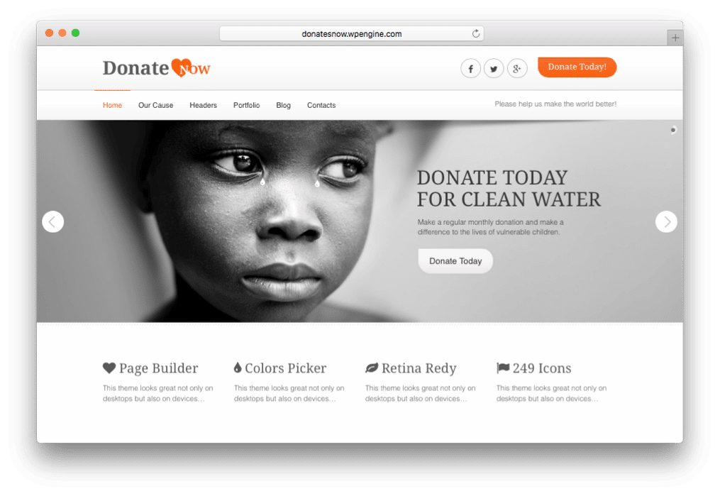 DonateNow WordPress Donation Plugin Theme