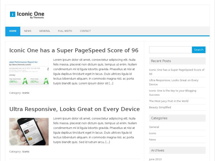 Iconic One WordPress SEO Optimized Theme