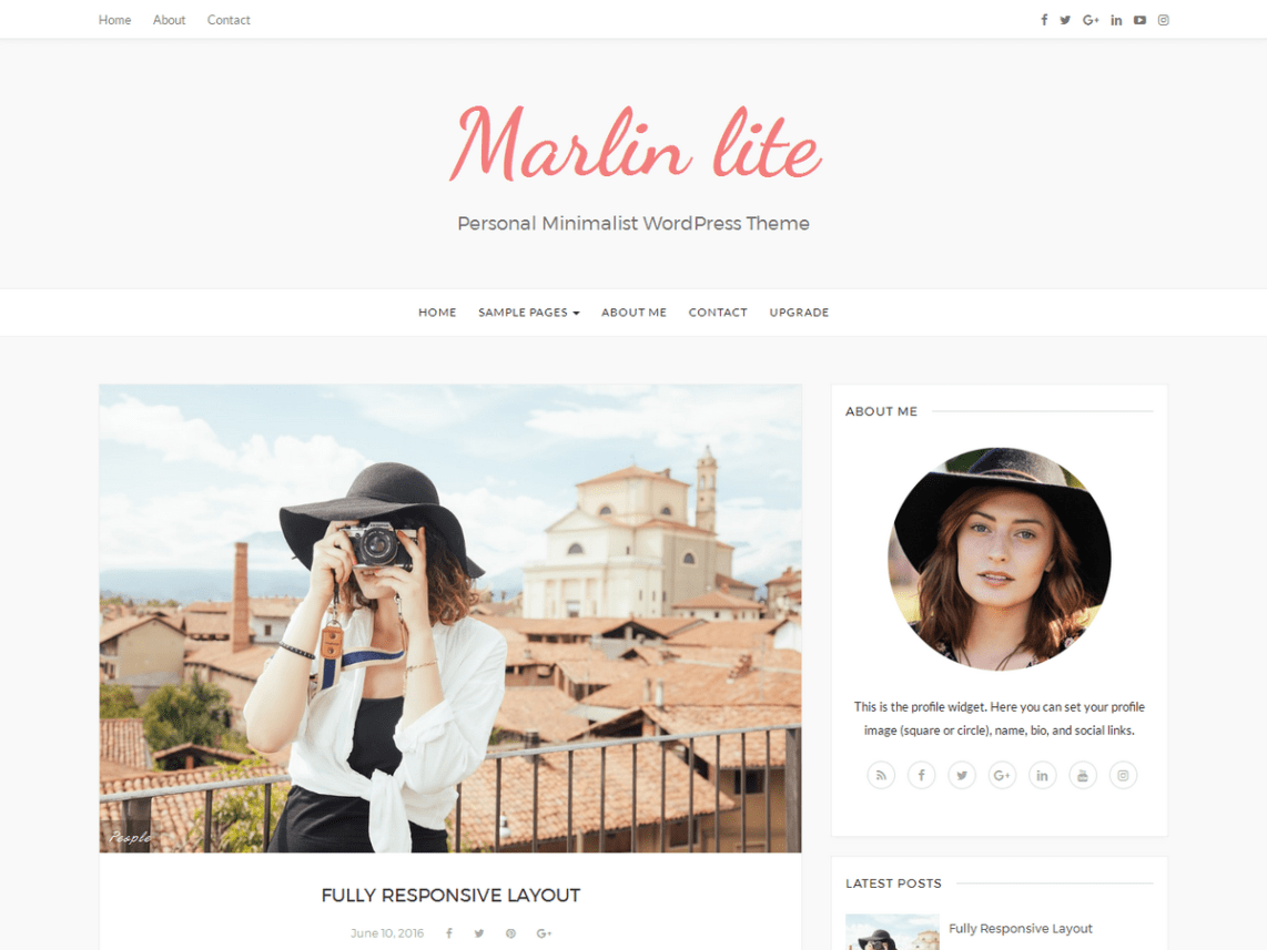 Marlin lite Free WordPress SEO Blog Theme