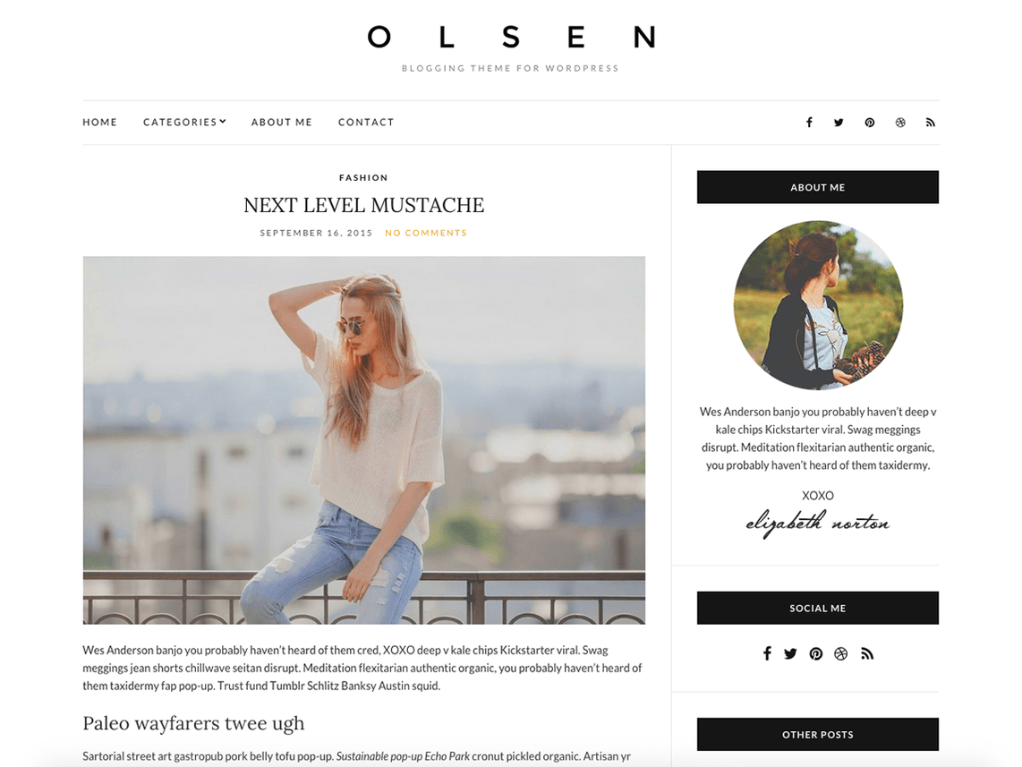 Olsen Light Free WordPress Blogging Theme