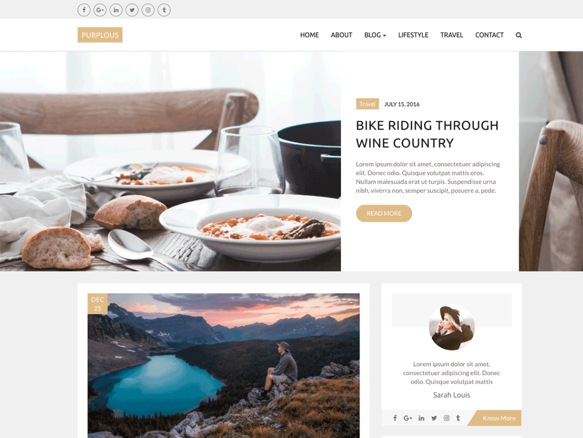 Purplous Lite WordPress Blog Theme