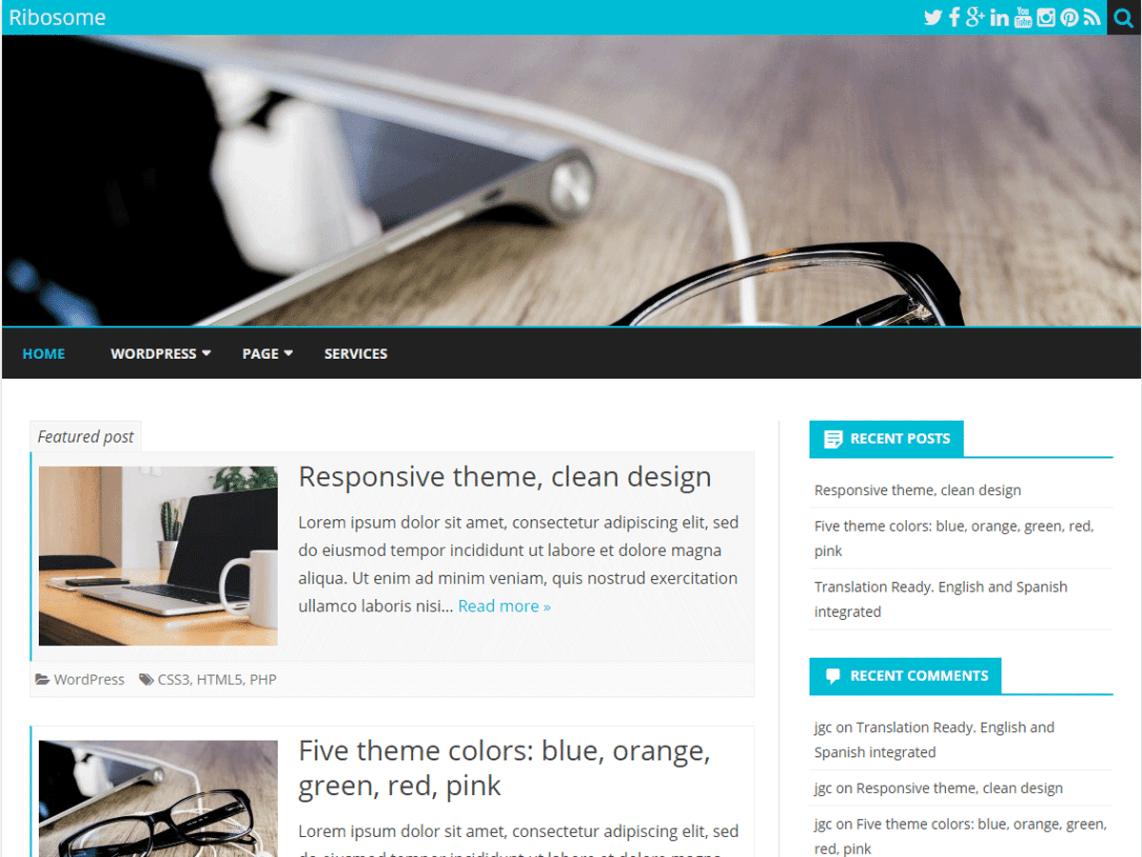 Ribosome Free WordPress Blog Theme