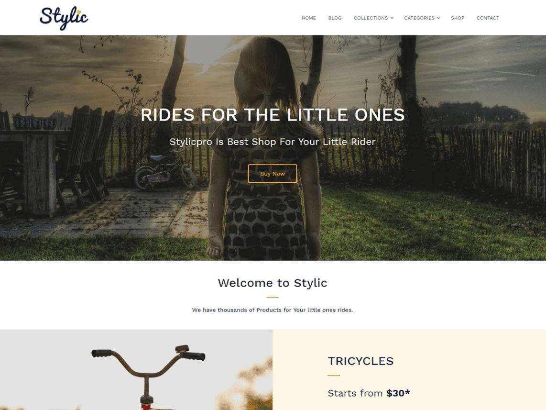Stylic Free WordPress Software & Shop Theme