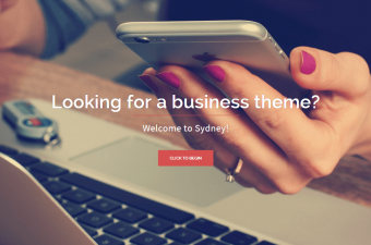 15 Free WordPress Themes For Software Company Website