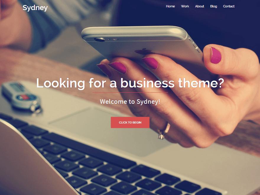 Sydney Free WordPress Software Business Theme