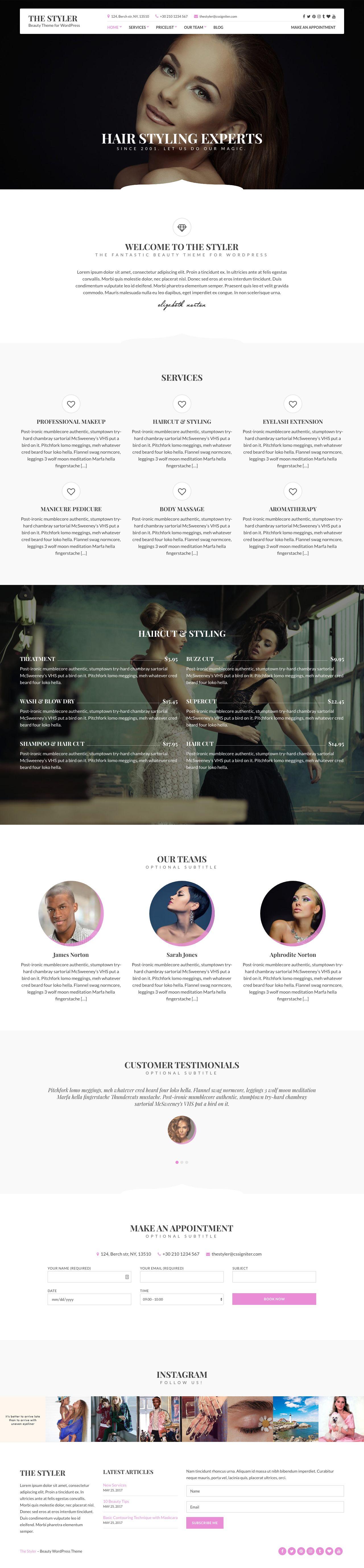 The Styler WordPress Theme