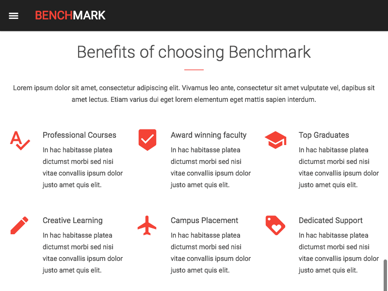 Benchmark WordPress Landing Page Theme