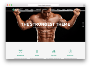 Sport WordPress Theme by VisualModo