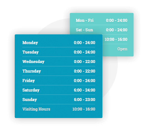 MedicPress WordPress Theme - Working Hours