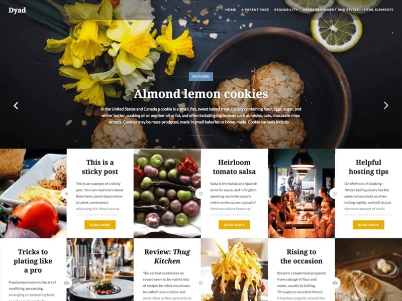 Dyad Free Photographer WordPress Theme