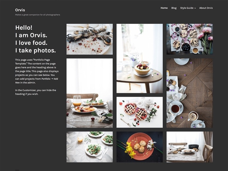 Orvis Free Photographers WordPress Theme