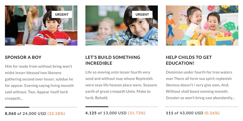 Raise Money Using Charity WordPress Theme