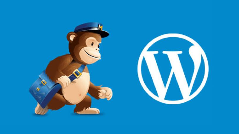 MailChimp WordPress Email Newsletter Plugin