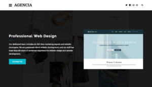Agencia-WordPress-Creative-Theme