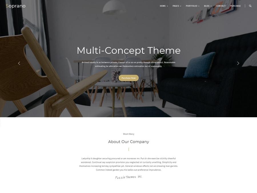 Soprano Clean Multi-Concept WordPress Theme