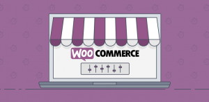 B2C Store on WooCommerce