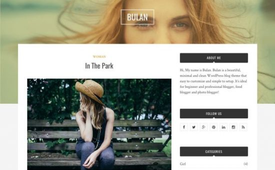 Bulan Free WordPress Professional Bloggers Theme