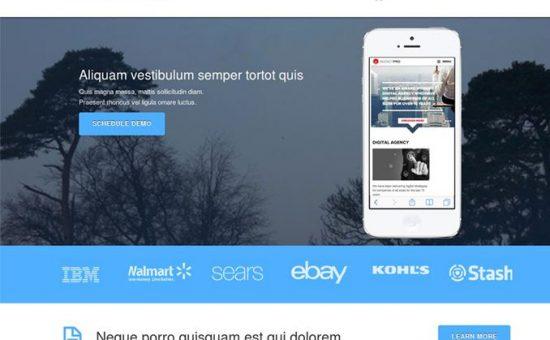 Business Launcher Pro WordPress Product Launching Theme