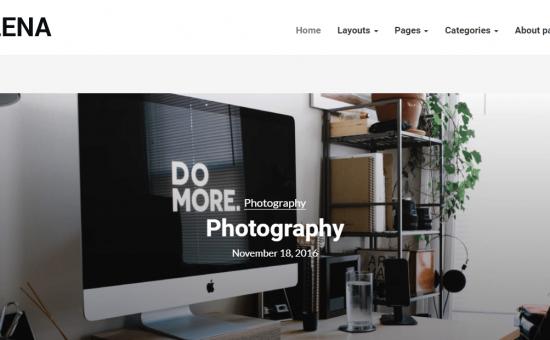 Elena WordPress Theme