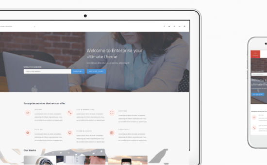 Enterprise WordPress Business Theme