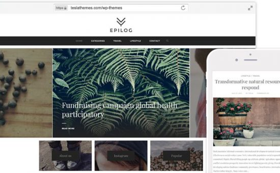 Epilog WordPress Modern Bloggers Theme