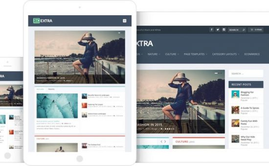Extra WordPress Theme by Divi Builder
