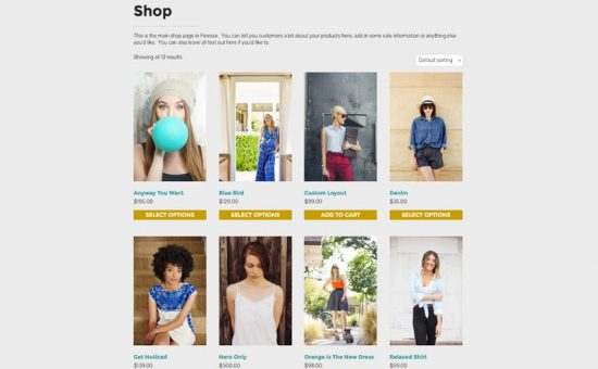 Finesse WordPress WooCommerce Theme