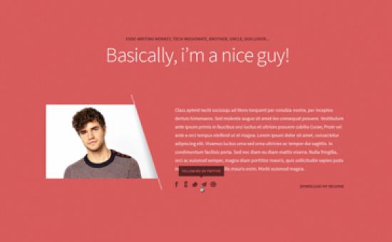 Freelancer WordPress One Page Portfolio Theme
