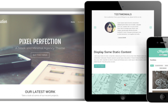 Hayden Responsive WordPress Agency Theme