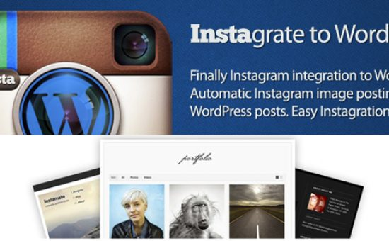 Instamate WP Instagram Integration Theme