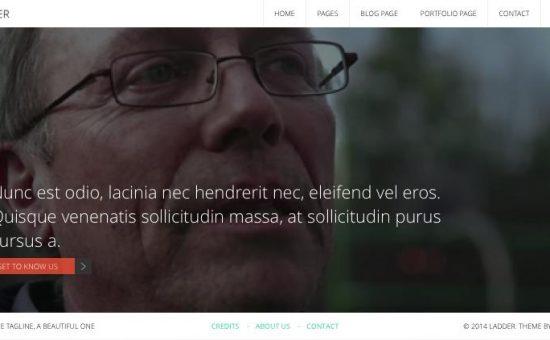 Ladder WordPress Modern Flat Design Theme