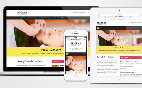 Modena WordPress Small Business Theme