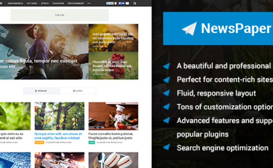 NewsPaper Responsive WordPress Content Rich Theme
