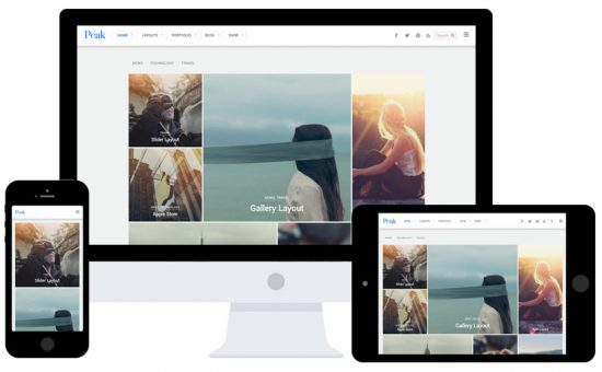 Peak Modern Grid Based WordPress Theme