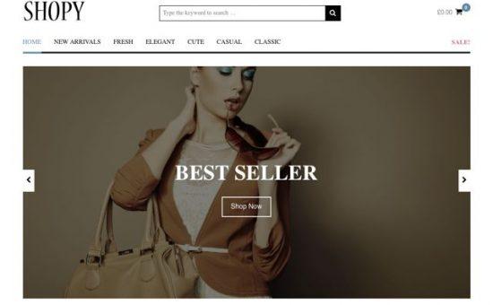 Shopy WordPress WooCommerce Theme