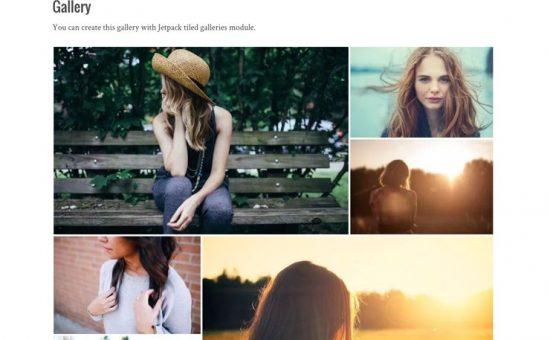 Silvia WordPress Free Grid Layout Creative Photo Theme