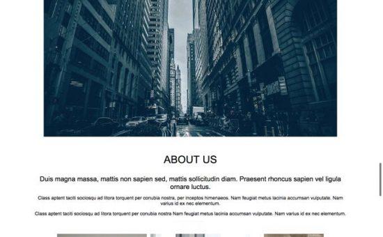 Startup Company Pro WordPress Theme