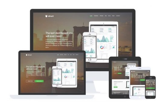 Struct WordPress SaaS & Mobile Apps Promoting Theme