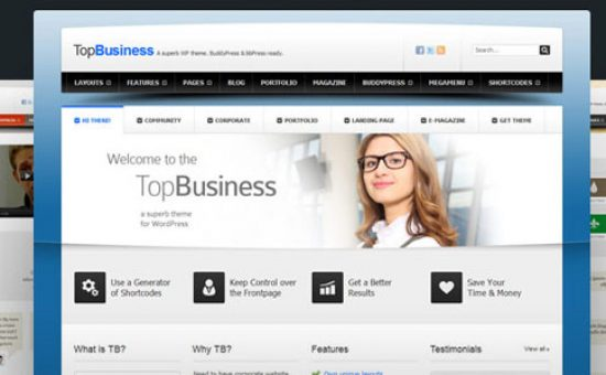 TopBusiness Responsive WordPress Theme