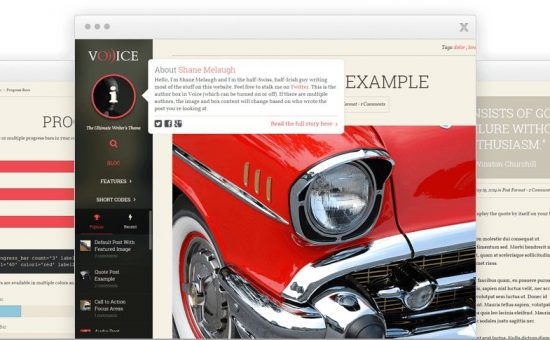 Voice WordPress Blogger Identity Theme